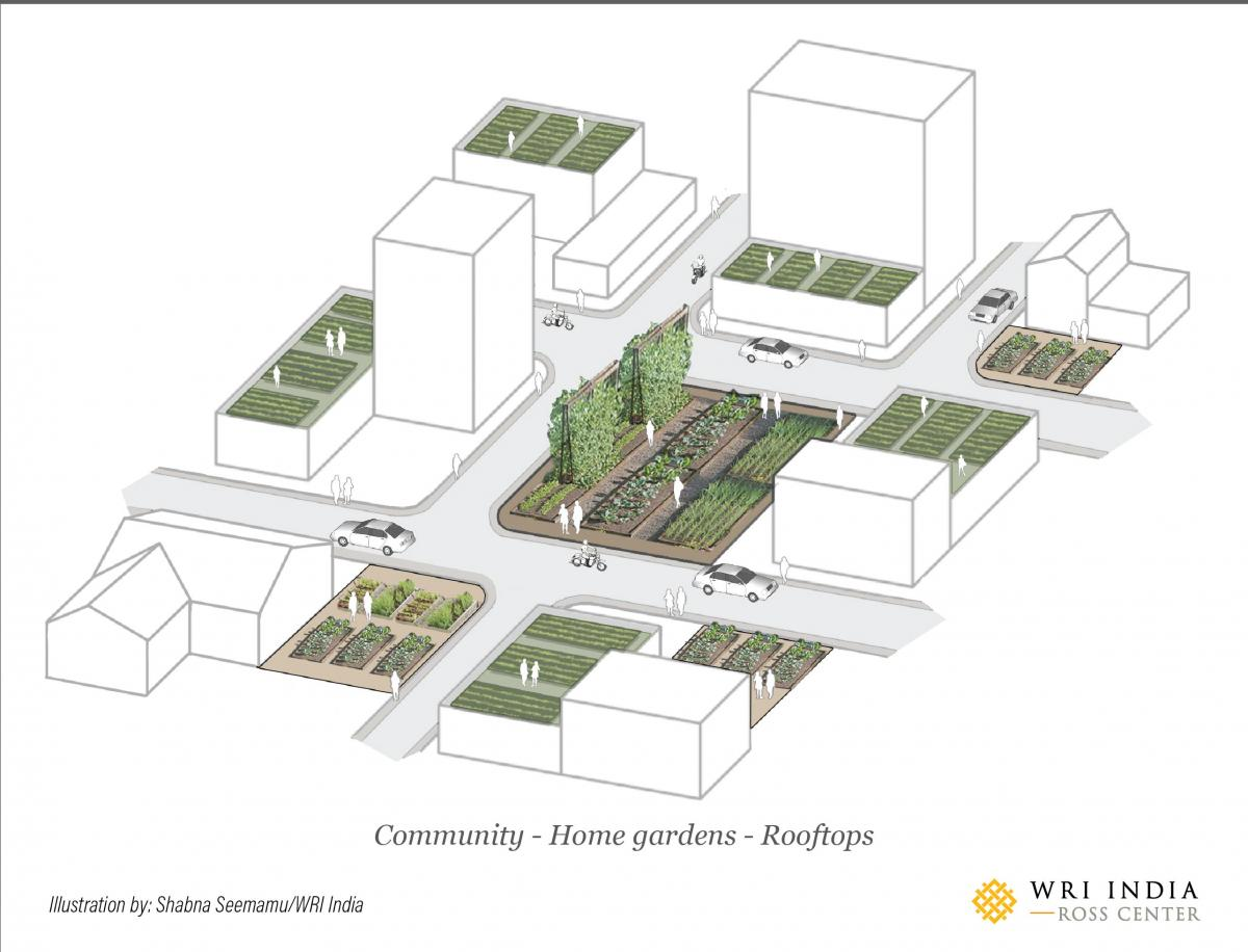 Community/home-gardens/rooftops