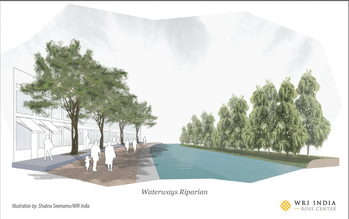 Waterways/riparian planting