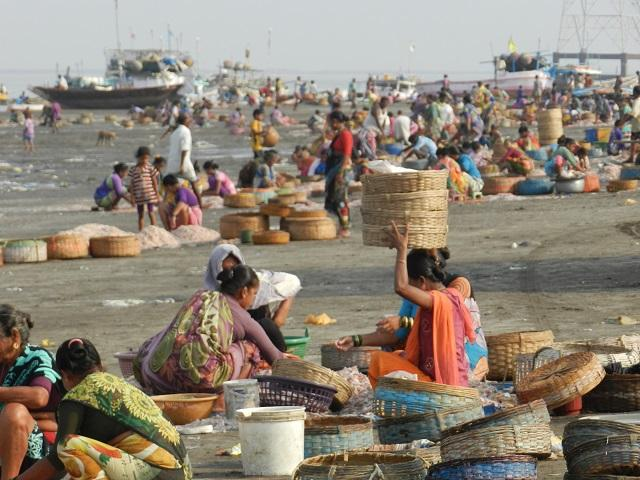 As India rapidly urbanizes and climate change progresses, coastal villages–like Arnala–struggle to keep traditional industries alive. Photo by World Resources Institute