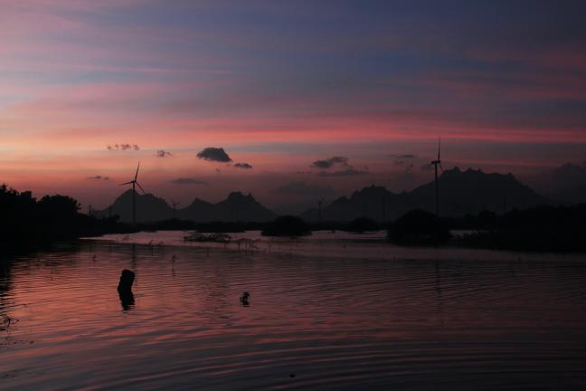 Repowering wind farms is a practical solution to address these issues and prevent the decommissioning of aging wind farms. Photo: Milin John / Unsplash