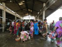 Fisherwomen crowd around the market place at the Arnala fish market on a cold Sunday morning; photo credit: Lubaina Rangwala/ WRI India
