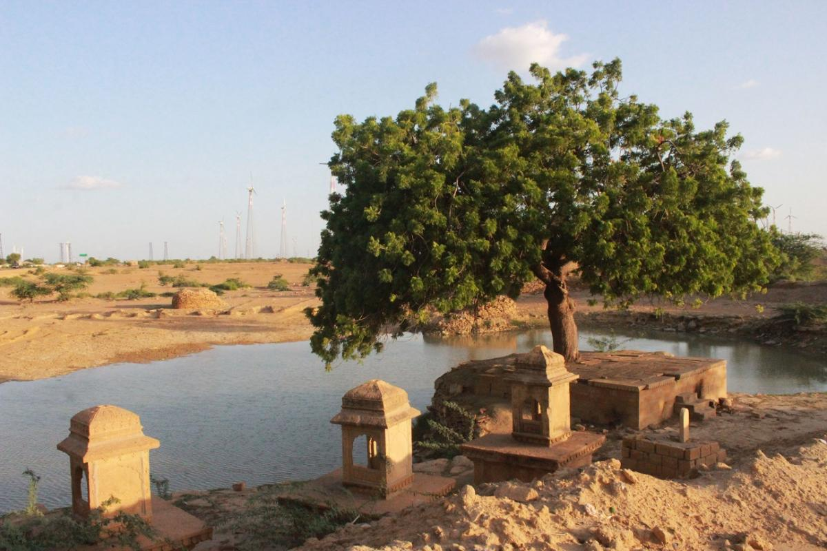 A sight for sore eyes: Rainwater collection pond adorned by cenotaphs and trees, Jaisalmer.