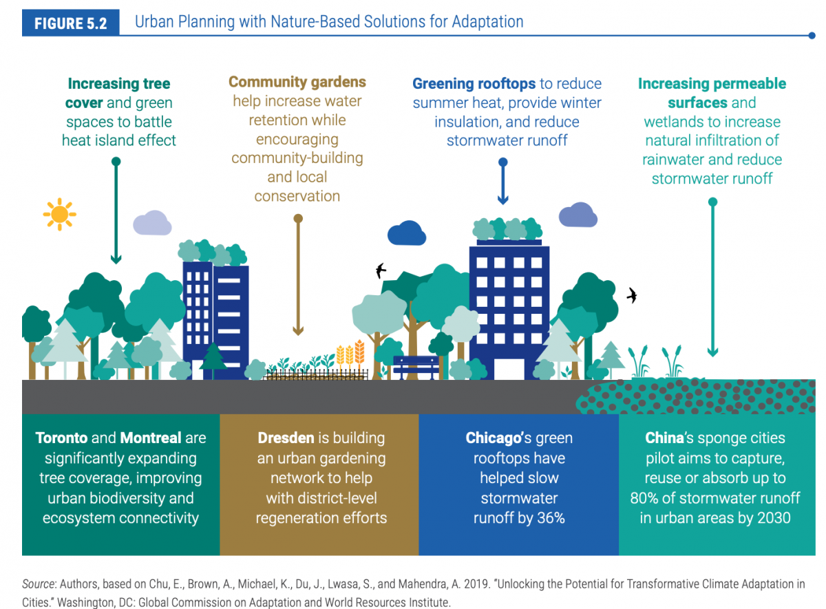 How cities integrate nature-based solutions for adaptation in urban planning