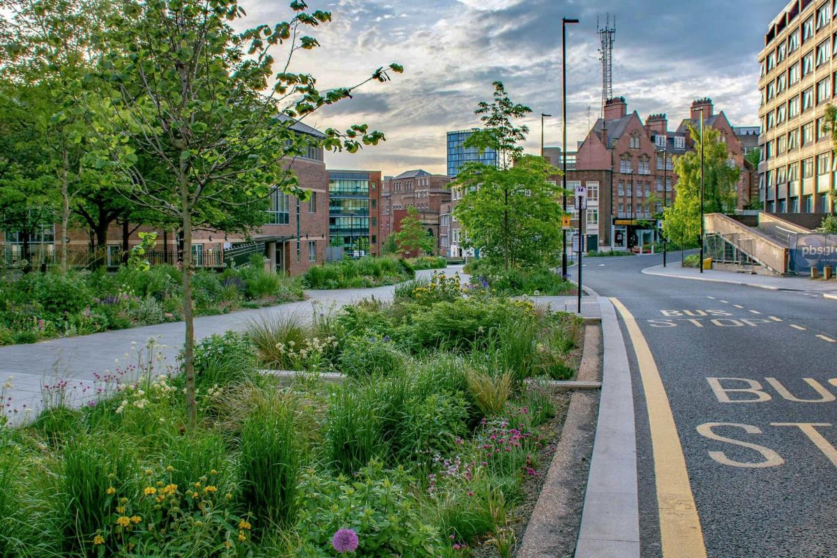 Green street section in Sheffield with permeable lane surfaces, planters, rain gardens to enable stormwater management.